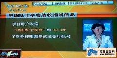 """救助玉树 发送短信""""中国红十字会""""到12114查询捐赠方式"""